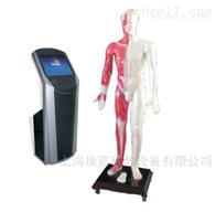 KAC/WST19M19寸多媒体人体针灸穴位交互平台