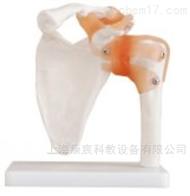 KAC/109自然大肩关节模型