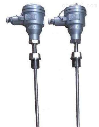 WZP2-240A防爆铂电阻
