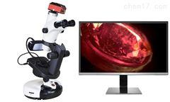 NGI-608T新疆和田玉翡翠珠宝玉石鉴定显微镜