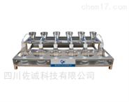 DLQ-6多功能不锈钢薄膜过滤器