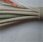 东莞计算机电缆DHJYPVP22厂家直销