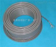 嘉峪关计算机电缆DHJYPVP22厂家直销