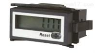 RTC-P2400中国台湾RIKO力科计数器
