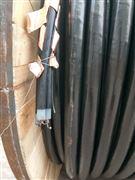 MVV  22  0.6/1kv    电力电缆