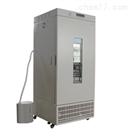 光照药物稳定性试验箱LRH-250-YG