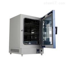 DHG-9140A立式鼓风烘箱干燥箱140L