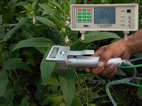 SY-1020玉米光合作用测定仪