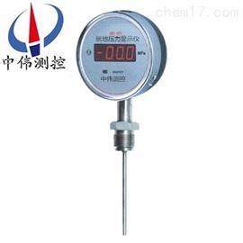 ZWY-100就地压力显示仪