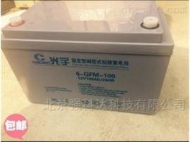 6-GFM-100光宇COSLIGHT蓄电池