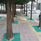 市政园lin树篦子ge栅