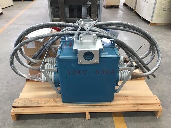 FZW28-12分界负荷开关手合电分