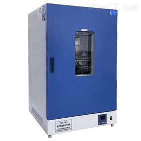 DGG-9246A标准电热恒温鼓风干燥箱实验室用