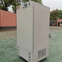 DHP-9082电热恒温培养箱