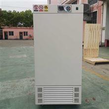 带定时电热恒温培养箱