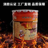 六安市超薄型钢结构防火涂料厂家