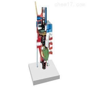 YUY-JP0152自动调节载荷补偿制动能量分配器解剖模型