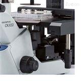 奥林巴斯倒置生物显微镜CXK53