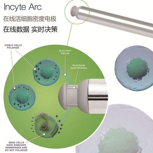 活细胞浓度监测电极