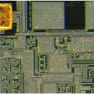 徠卡顯微鏡攝像頭MC190HD中國經銷商
