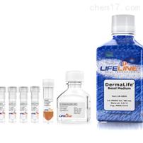 lifeline LL-0034人间充质干细胞培养基套装