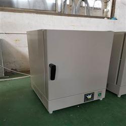 DHG-9240C广东 240L精密高温烘箱