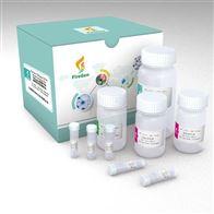FG0413-L血液RNA提取试剂盒