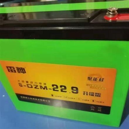 理士雷神6-DZF-22.9 电动车用铅酸蓄电池