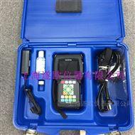 美国泛美38DL PLUS超声波测厚仪
