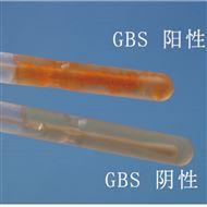 妇科产前筛查GBS预防用培养基