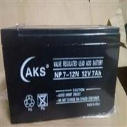 奥克松蓄电池
