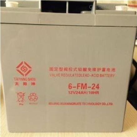 太阳神6-FM-24AH 12V24AH 铅酸免维护蓄电池