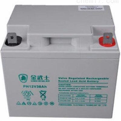 12V38AH金武士蓄电池12V38AH 铅酸免维护 UPS专用