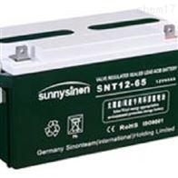 SNT12-65赛能蓄电池批发零售