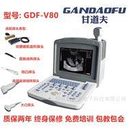 GDF-V80背膘眼肌面积测定仪新报价价格多少钱