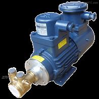PR防爆变频减震低噪音增压式黄铜旋转叶片泵