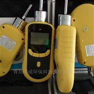 路博自产LB-BZ泵吸式单一有毒气体检测仪