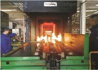 RSMIIRSM工业炉炉温测试系统