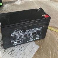 12V7AH理士蓄电池DJW12-9区域代理选购