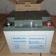 12V38AH理士蓄电池DJM1238S批发零售价格