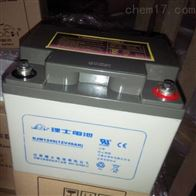 12V40AH理士蓄电池DJM1240供应商