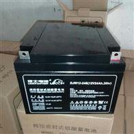12V24AH理士蓄电池DJW12-24S全新