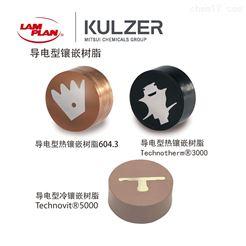 KLC000022冷镶嵌树脂导电型双组份
