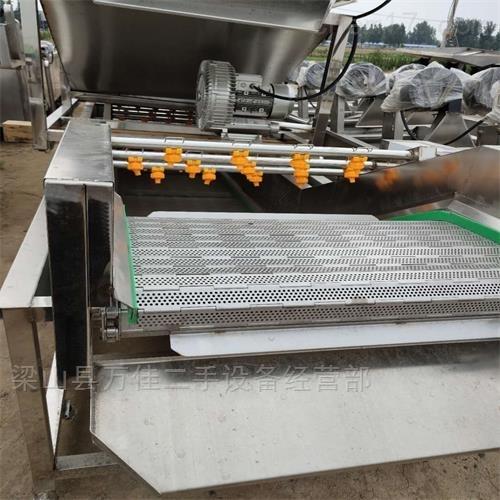 厂家直销4米长全新果蔬清洗机