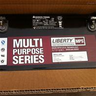 12V100AH大力神储能蓄电池MPS12-100R