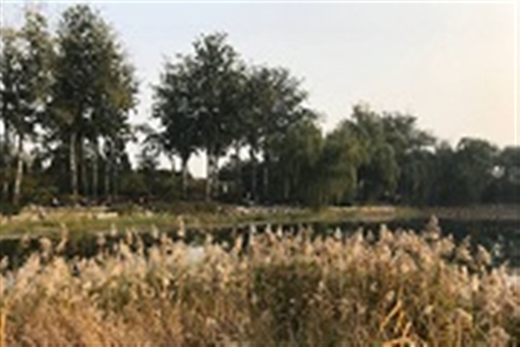 保護自然環境 科學儀器助力建設綠色中國