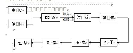 冻干粉针流程图