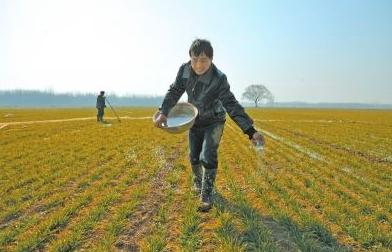高智能土壤环境测试及分析评估系统设备