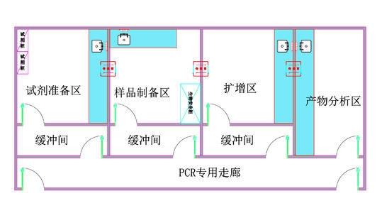PCR实验室平面图