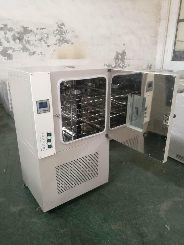 熱空氣老化試驗箱DHG-100L